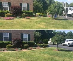 4 seasons landscaping bush and tree trimming before and after 4