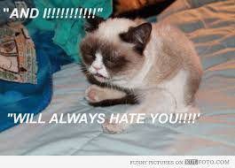 Tard The Grumpy Cat Meme - grumpy cat singing whitney houston funny cat with grumpy face