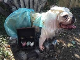 game of bones is the best halloween costume in all of westeros