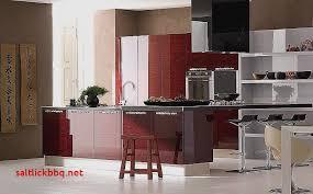 cuisine bi couleur idee peinture cuisine pour idees de deco de cuisine impressionnant
