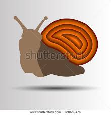 snail stock images royalty free images vectors