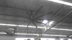 Honeywell Ceiling Fan by Ideas Walmart Ceiling Fans Flushmount Ceiling Fan Inexpensive