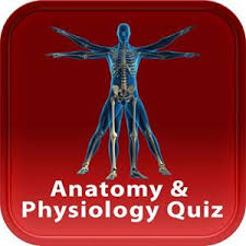 Human Anatomy And Physiology Review Anatomy U0026 Physiology Review Quiz Itrd Information Technology