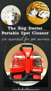 The Rug Doctor Coupons Rug Doctor Portable Spot Cleaner For Pet Owners Brie Brie Blooms