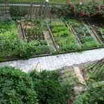 home vegetable garden pictures duguwe decorating clear