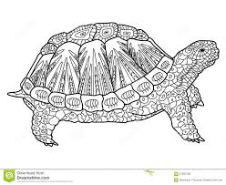 turtle coloring book for adults vector stock vector image 67663799