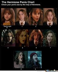 Hermione Memes - harry potter hermione memes best collection of funny harry potter