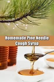 best 25 pine needles ideas on pinterest douglas fir douglas