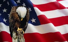 Bald Eagle On Flag Memorial Day 2016 U2013 Jo U0027s Nautical Bar