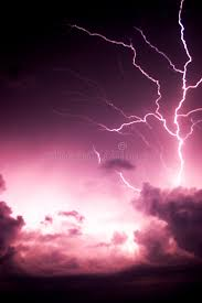 lightning tree stock image image of future lightning evil 18761