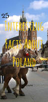 best 25 facts about poland ideas on pinterest poland facts