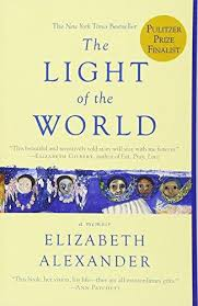 the light of the world elizabeth alexander 9781455599868 the light of the world iberlibro elizabeth