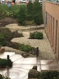 drainage problems and remediation sfp landscaping