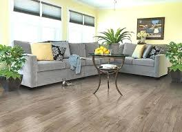 Wood Floor Cleaning Products Installing Laminate Wood Flooring In Bathroom You Have To Choose