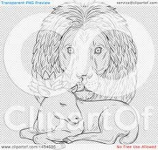 clipart graphic of a black and white sketchd lion head looking