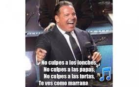 Luis Miguel Memes - por gordo luis miguel acapara memes c祿digo san luis