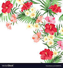 flower garland tropical flower garland royalty free vector image