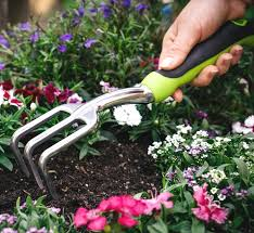 Gardening Tools Amazon by Amazon Com Hand Cultivator With Ergonomic Handle From Homegrown