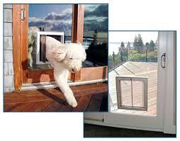 doggie door in glass door pet doors house doctors handyman services