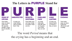 what is the period of purple crying purplecrying info