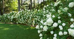 Gardens And Landscaping Ideas Terrascapes Landscape U0026 Garden Design Installation Fine Gardening