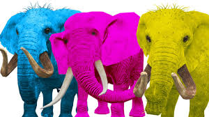 crazy elephant singing finger family rhymes colors song