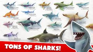 Hungry Shark Map Hungry Shark World 必应 Images