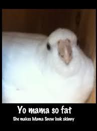Snow Meme - mama snow meme by tanatiels on deviantart