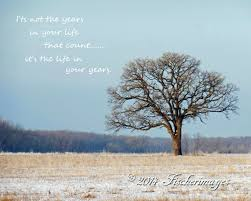 Bare Lone Tree With Inspirational Quote Color Wall Art Home