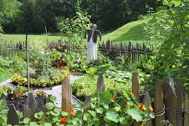 the astonishing easy vegetable garden with diy garden beds made of