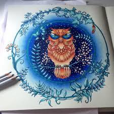 johanna basford enchanted forest cute owl u003c3 my pages