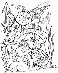 tropical fish coloring pictures kids coloring