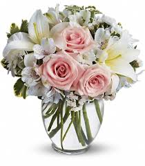 white get well flowers
