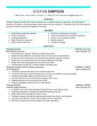 sharepoint resume resume format download pdf sharepoint developer