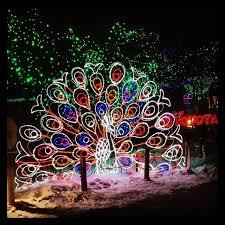 meer dan 1000 ideeën over zoo lights op pinterest chicago winter
