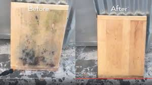 how to get rid of mold in a house home interiror and exteriro