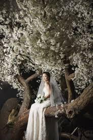 wedding wishes in korean 143 best korea wedding images on korean wedding pre