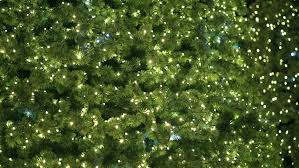 out of focus christmas lights on a tree twinkle stock footage