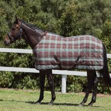 Weatherbeeta Combo Stable Rug Stable Rugs For Horses Millbry Hill