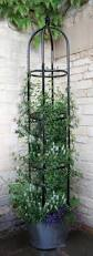 metal garden obelisks 1 8m tall parisian metal garden obelisks