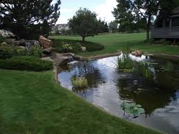 Backyard Pond Landscaping Ideas Garden Design Fish Pond Waterfall Pond Landscaping Ideas