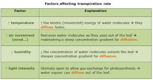 transpiration in plants and factors affecting tranpiration rate