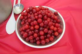 Red Barn Santaquin Utah Fresh Produce At Rowley U0027s Red Barn