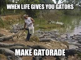 Gatorade Meme - meme contest winners crocodile lifestyle mandatory