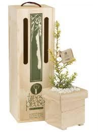 Bereavement Gifts Bereavement U0026 Memorial Gifts U2013 Trees Please