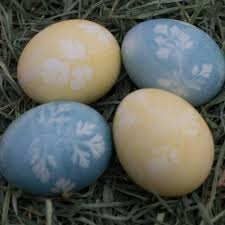 natural herb stenciled easter eggs upstate ramblings