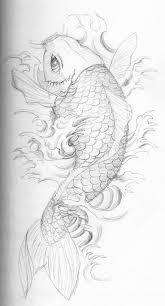 drawn koi sketch pencil and in color drawn koi sketch