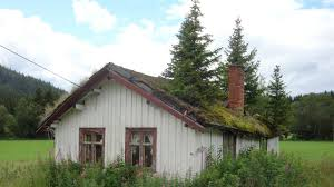 Scandanavian Homes Why Do Scandinavians Grow Grass On Their Roofs Photos The