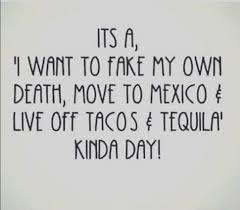 Bad Day Meme - mexico grand trunk pinterest humor sarcasm and stuffing