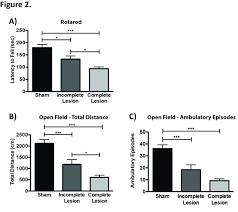 behavioral characterization of the 6 hydroxidopamine model of